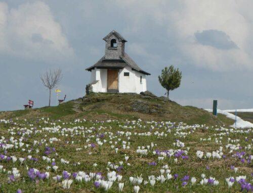 Fast schon Tradition: Spenden vom Markbachjoch-Kirchlein an Schritt für Schritt