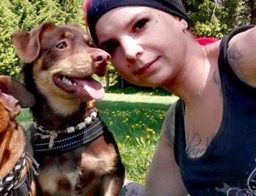 Michelle mit Krümel: Therapiebegleithunde-Team
